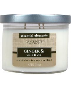 Essential 14,75 oz/418g Ginger & Citrus