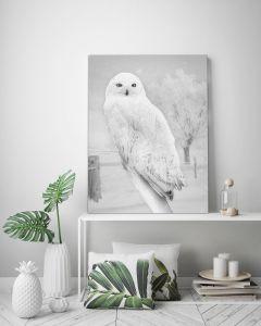 Tavla Canvas 50x70 Winter Owl
