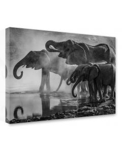 Tavla Canvas 75x100 Elephants by water