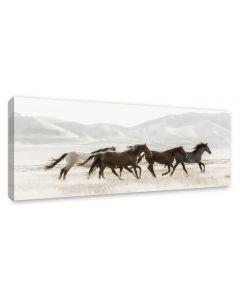 Tavla Canvas 60x150 Mustangs