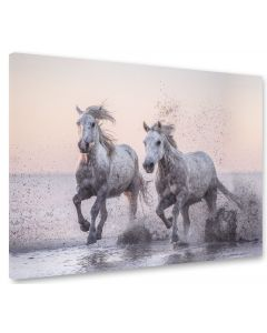 Tavla Canvas 75x100 Horses in dawn