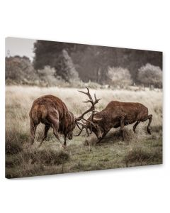 Tavla Canvas 75x100 Antlers