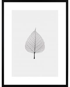 Poster 30x40 Light Leaf (Planpackad)
