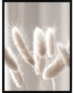 Poster 30x40 Nature Dry Grass
