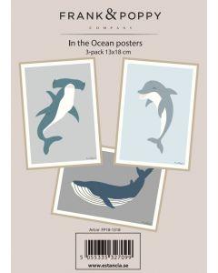 Poster 13x18 - 3 pack Frank & Poppy Ocean 2