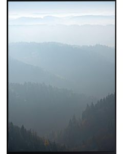 Poster 50x70 Nature Forest and Sky (planpackad)