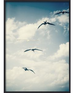 Poster 42x59,4 A2 Flying Birds